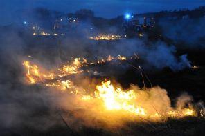 201104-Flächenbrand-Bauer_Korte-2