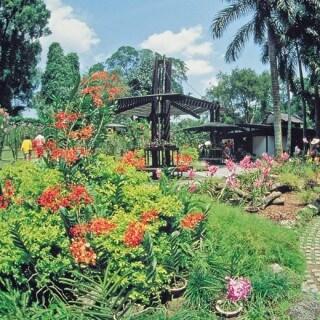 Garten_Singapur-320x320